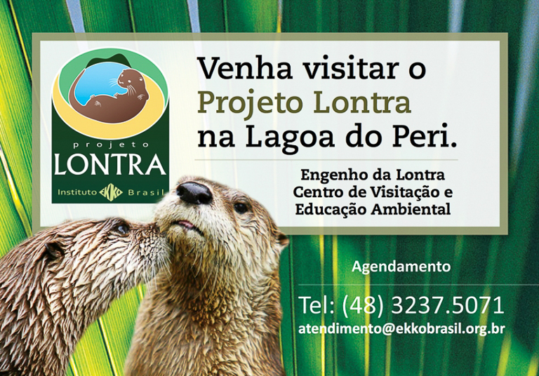 Projeto Lontra Florianópolis