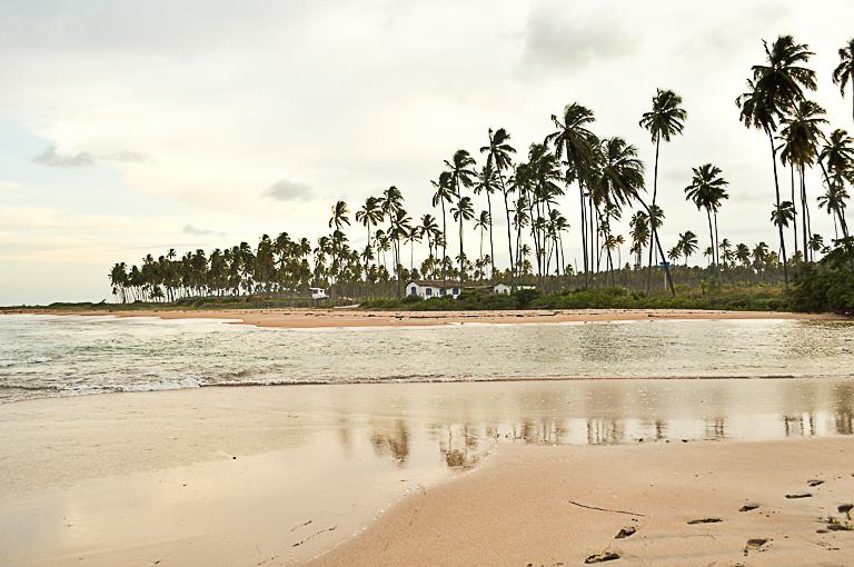 Praia do Riacho em São Miguel dos Milagres
